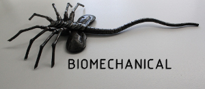 Biomechanical Facebookissa